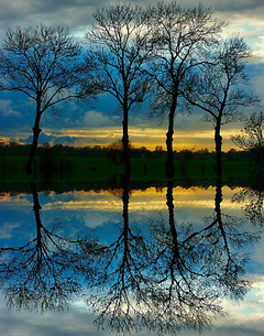 Peaceful_reflection_by_mike_nl_at_f