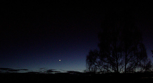 Birch_tree_and_evening_star_northof