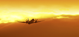 Plane_takes_off_by_birdlike_at_flic