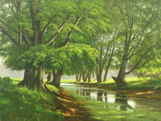 Christian_berthelsen_forest_stream