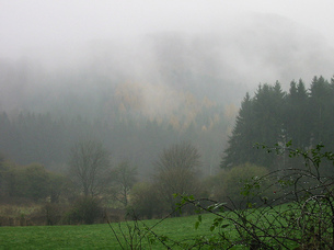 Nebel_by_pittigliani2005_flickr