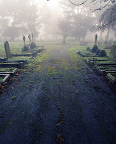 Graveyard_mist_by_laurencetucker